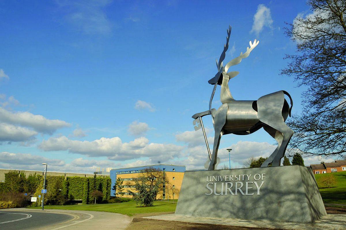 Surrey International Scholarship for Psychology in UK