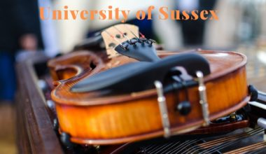 Dr John Birch Music Scholarship at University of Sussex