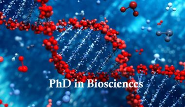 Fully-funded PhD Studentship in Biosciences