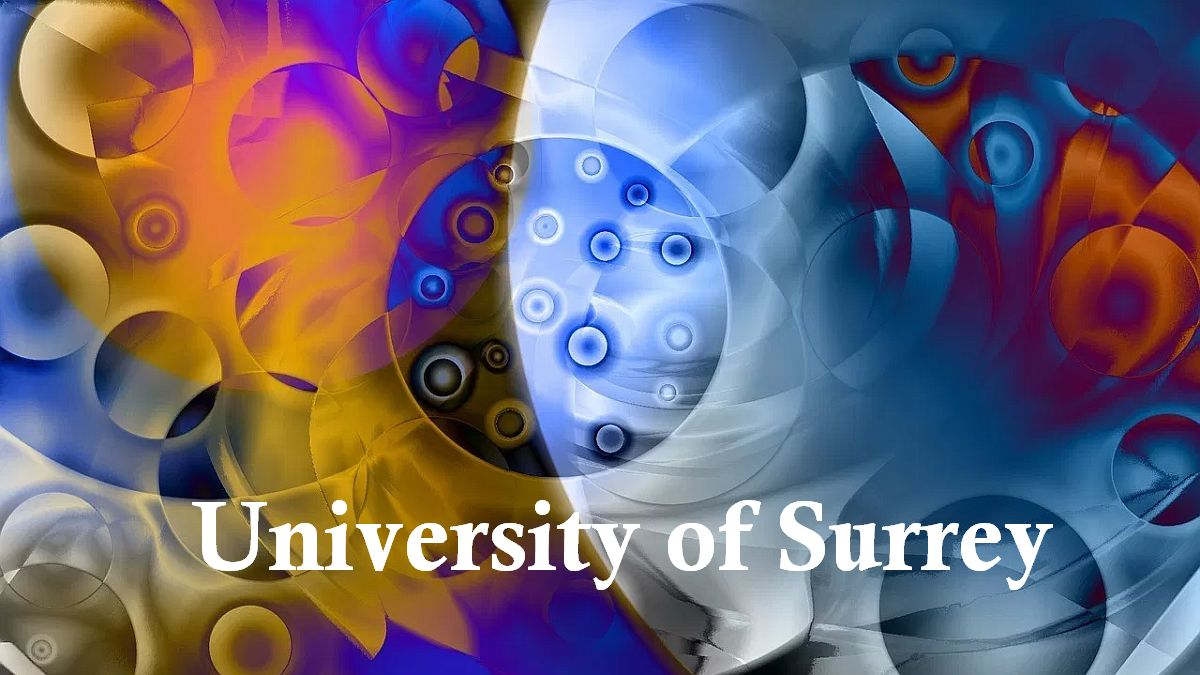 Nuclear Science Scholarship at University of Surrey